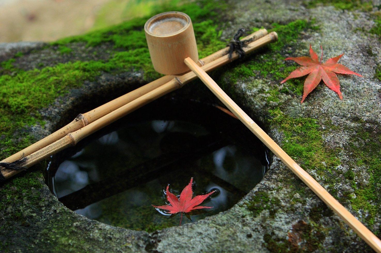 Kyoto Zen Buddhist Temple stays | Slow Tourism Japan