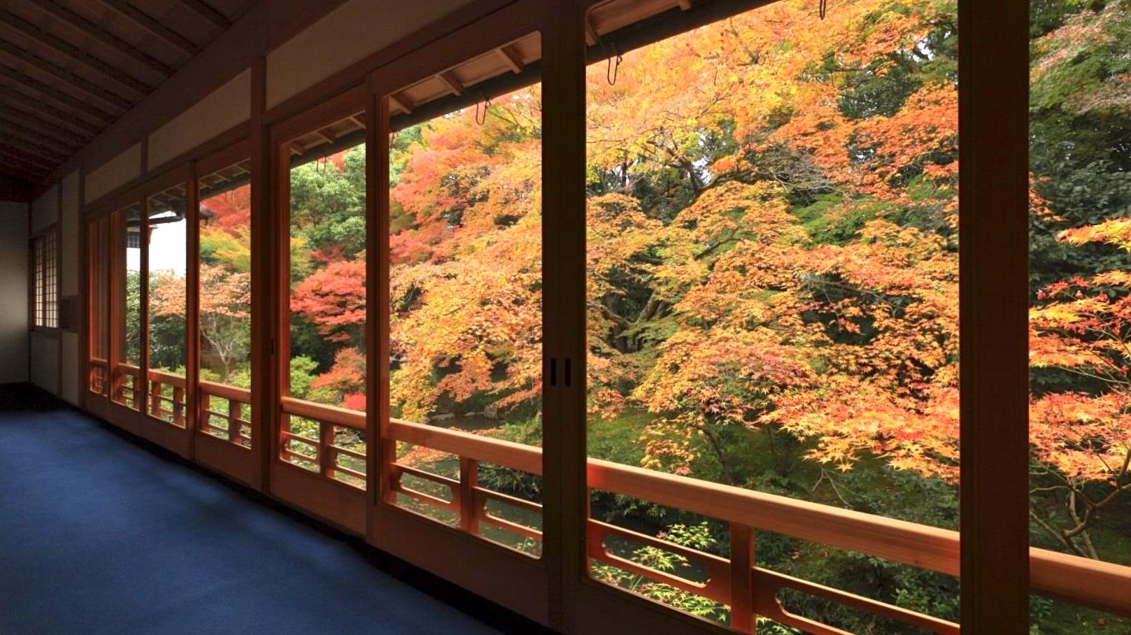 Kyoto Zen Buddhist Temple stays